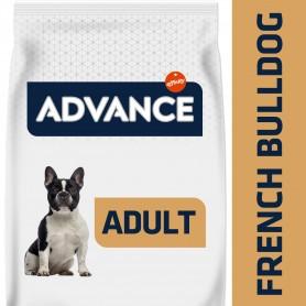 Advance razas perro