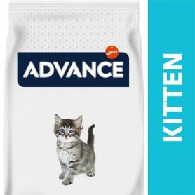 Advance gama básica gato