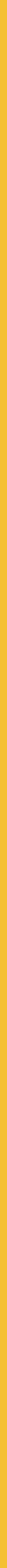 Pienso_Dingo_Adult_&_Daily_Linea