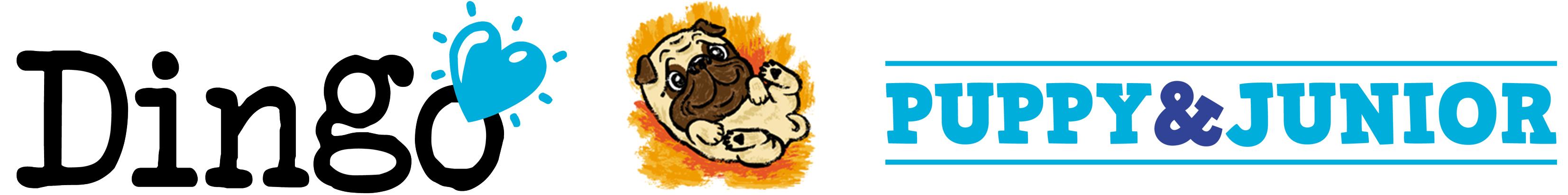 Dingo_Puppy_&_Junior_Cabecera