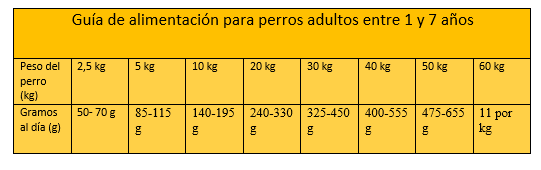 tabla ideal balance pautas_1.PNG