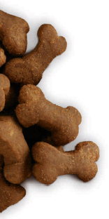 Hills_Prescription_Diet Hypoallergenic Treat